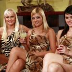 Playboyeve zajčje lepotičke v nizkem štartu. (foto: Jani Bozic)