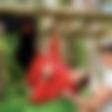 Boštjan Bračič: Poiskal je pomoč