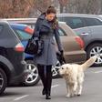 Iryna Osypenko Nemec: Z Maxijem na sprehod