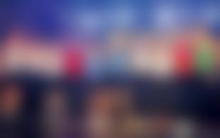 Mister Slovenije 2012: Izbrani postavni žrebci