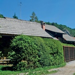 Milena Zupančič: Tatovi ispraznili hišo (foto: arhiv Nove)