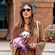 Alessandra Ambrosio: Pobarvala psa