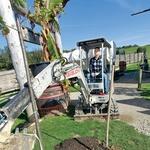 Damjan Murko: Za sina posadil drevo (foto: M. P.)
