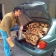 Vlado Pilja: Posekal gozd?