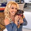 Britney Spears: Psička ima profil na Twitterju