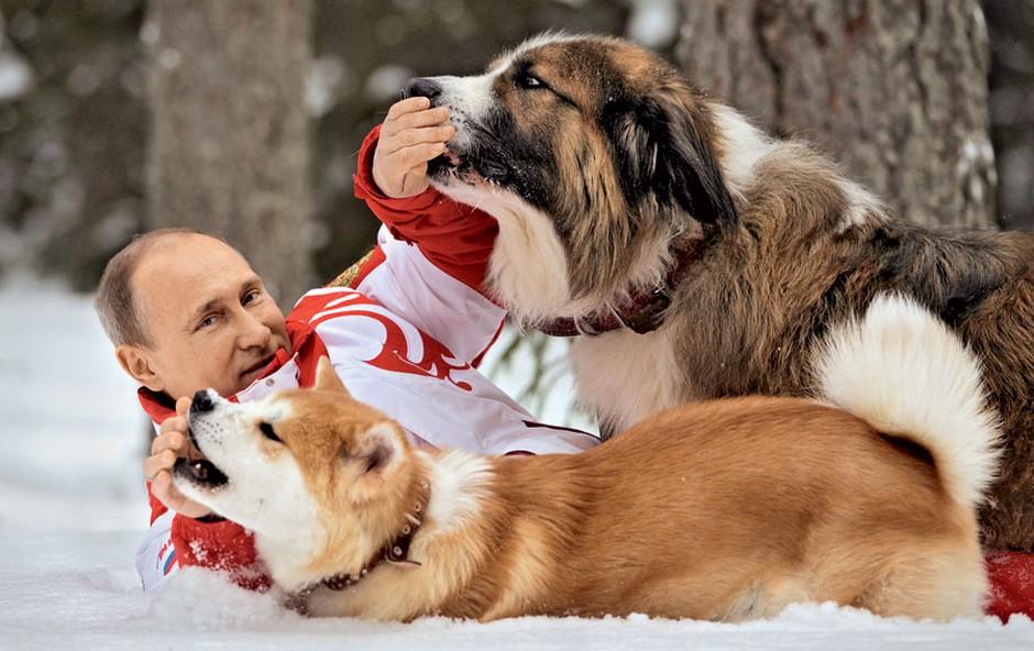 Vladimir Putin je nor na svoje pse (foto: Profimedia)