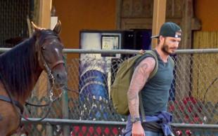 Družino Beckham ujeli na jahanju