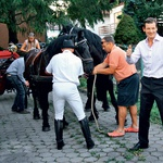 Yurija so s kočijo in  konji frizijci odpeljali do njegove zabave.  (foto: GK)