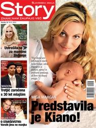 Story Story 39/2013