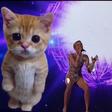 Miley Cyrus nastopila ob gigantskem mačku