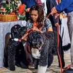 Prihod smreke v Belo hišo je nadzorovala Michelle s hčerkama in hišnima ljubljenčkoma. (foto: Profimedia)