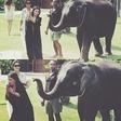 Kim Kardashian med fotografiranjem presenetil slon