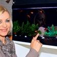 Brigita Šuler: Ribe po feng šuju