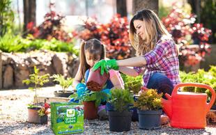 Oskrba rastlin brez napora