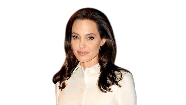 Angelina Jolie je najela varnostnike za internet (foto: profimedia)