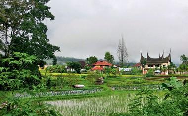 Ota Roš v deževnem gozdu Sumatre