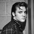 Ob 40-letnici Elvisove smrti poklon kralju rock'n'rolla tudi v Vrtovčah in na Ljubljana festivalu