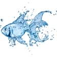Lučka Kajfež Bogataj s knjigo Planet Voda o vodi, brez katere nas ne bi bilo!