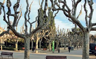 Kako je Špela Jereb pomlad pričakala v Barceloni