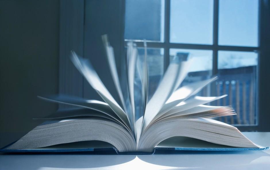 Prepišno uredništvo LUD Literatura spet odpira svoja vrata (foto: profimedia)