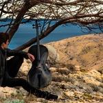 Luka Šulić (2Cellos) skrbi za svoje inštrumente (foto: 2Cellos)