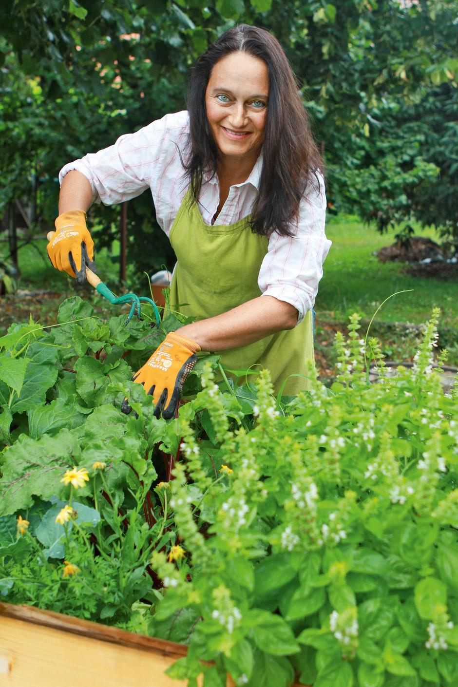 Alenka je popolnoma osredotočena na nove poletne pridelke.  (foto: Goran Antley, osebni arhiv)