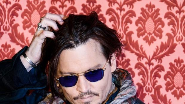Johnny Depp prodaja vas v Provansi (foto: profimedia)