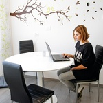 Občasno sede tudi  za računalnik (foto: Goran Antley)
