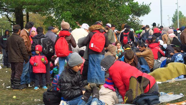 Rdeči križ Slovenije pomagal več kot šestdeset tisoč ljudem, združil osemdeset družin (foto: Goran Antley)