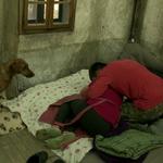 Maruša (Kmetija: Nov začetek) se je zgrudila v bolečinah! (foto: Planet TV)