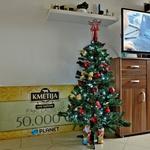 Pod jelko imata  lepo božično darilo,  bon za 50 tisočakov! (foto: Primož Predalič)
