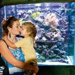 V akvariju in terariju imajo številne živali. Med njimi gabonskega gada, ki lahko z ugrizom ubije 30 ljudi in doseže težo 12 kilogramov.  (foto: Lea Press)
