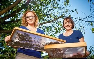Metka in Tina Ternjak: Čas za vrtnarjenje