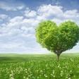 Ko so ljudje razočarani v ljubezni, menijo, da je niso vredni