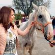 Bi tako kot Leni, Natalija, Jan in Alya tudi vi postali boter konju?