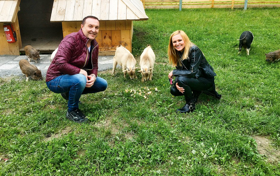 Frenk Nova in Nuša derenda bosta pasla krave (foto: osebni arhiv)