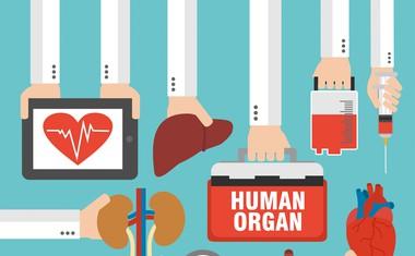Soočamo se s pomanjkanjem organov