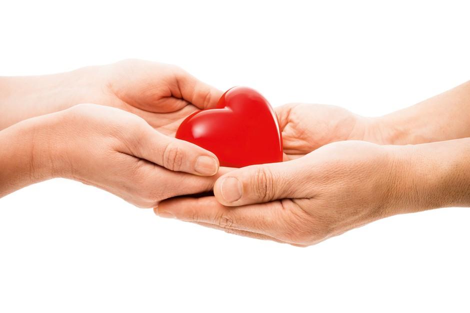 Soočamo se s pomanjkanjem organov (foto: Shutterstock, Aleksandra Saša Prelesnik)