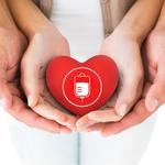 Zahvala ob zaključku letošnje krvodajalske iniciative Daruj energijo za življenje! (foto: profimedia)