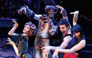 Cats evforija: Prvi dve predstavi že razprodani!