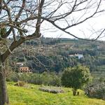Mogočen Plestenjakov  primorski dom je v  osrčju Strunjana s  pravljičnim pogledom  na Piran, obdan z  istrskim zelenjem z  vseh strani. (foto: N.Divja)