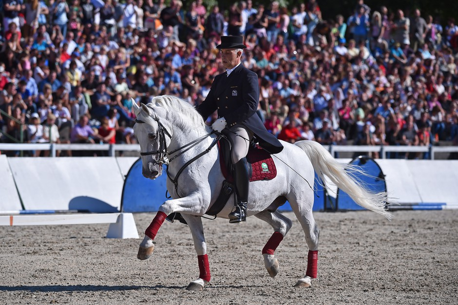 Najlepši beli lipicanci premierno v Lipici! (foto: Boris Pretnar)