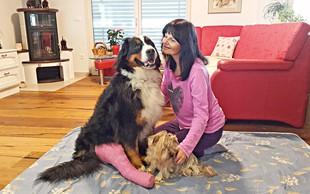 Nataša in Dino Bešter preživljata težko obdobje zaradi nesreče psičke
