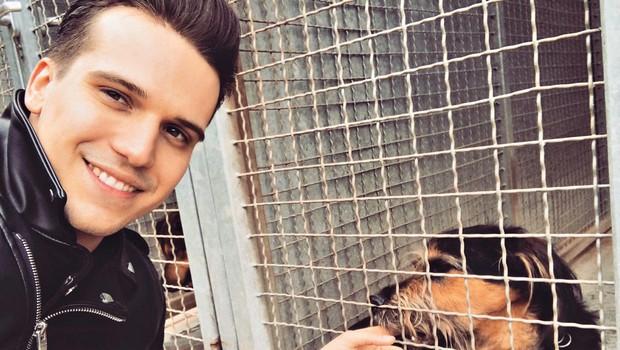 Tim Kores posvojil psička iz zavetišča (foto: Story press)