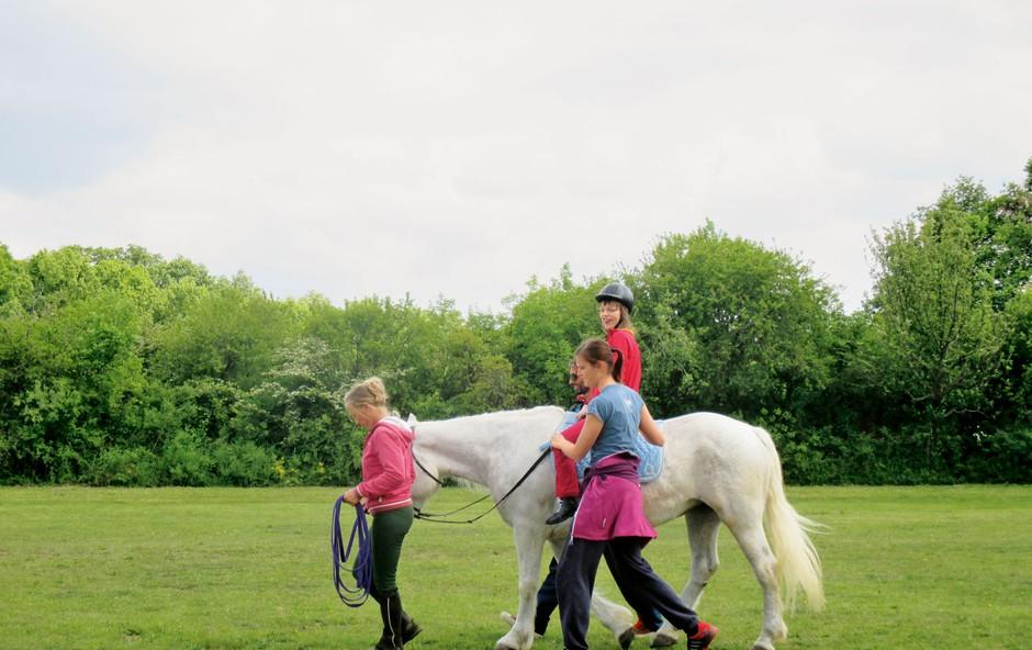 Počitniški programi Zveze Sonček: Terapija s konji je v razmahu (foto: arhiv Sonček)