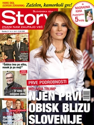 Story 21/2017