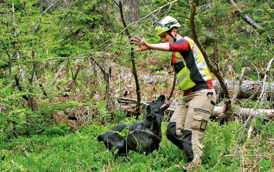 Pasji reševalci: Proces šolanja traja dve leti (foto: Matjaž Koprivc)