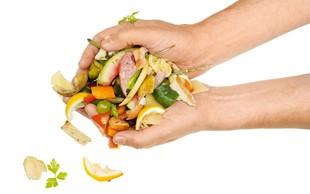 Kako do manj zavržene hrane?