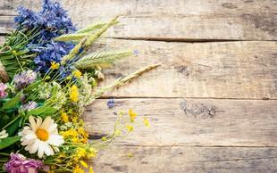 Pisani šopki z domačega vrta - lepi in dišeči