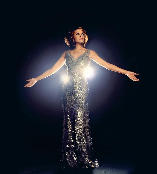 Whitney Houston med nominiranci za vpis v dvorano slavnih rock'n'rolla (foto: Profimedia)